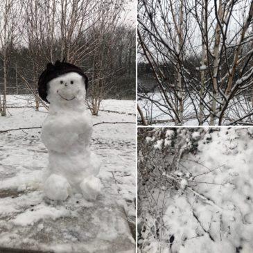 Endlich schneit es in Düsseldorf